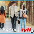 Download Drama My Roommate is a Gumiho Episode 10 Sub Indo